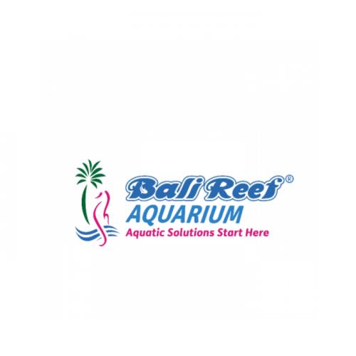 Lowongan Kerja Perikanan di Bali Reef Aquarium
