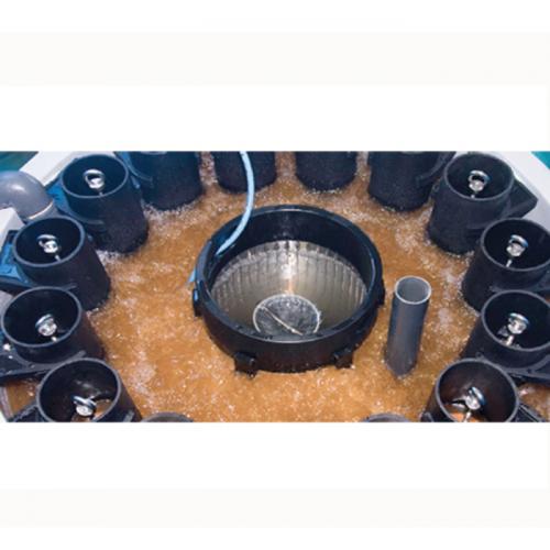 Teknologi Artemia INVE Terbaru dan Optimalisasi Penetasan Artemia