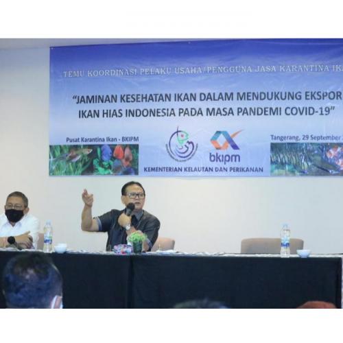 Prof Rokhmin Dahuri: Ikan Hias Sumbang Devisa Rp 500 Miliar