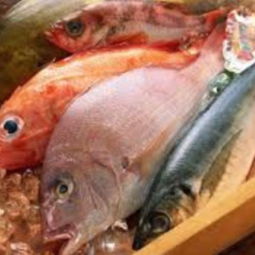 Manfaat Konsumsi Ikan secara Teratur untuk Kesehatan, Diantaranya Mengobati Depresi