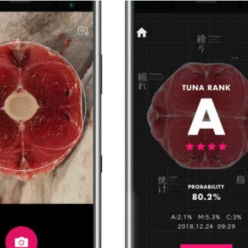 Japan Adopts AI for Tuna Quality Evaluation