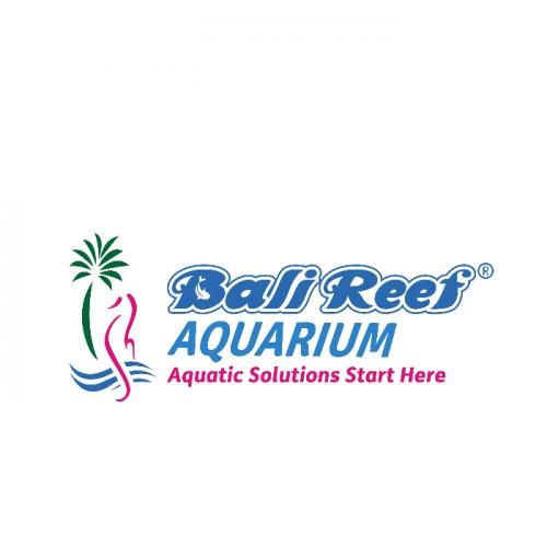 INFOMINA Lowongan Kerja Perikanan di Bali Reef Aquarium