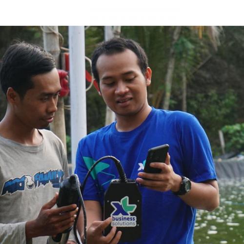 XL Axiata Bikin Solusi IoT untuk Bantu Tingkatkan Kualitas Budidaya Ikan dan Udang