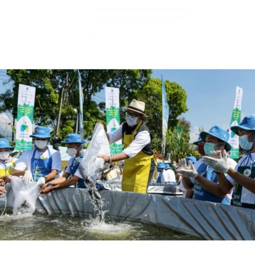 Petani Milenial Kembangkan Sektor Perikanan Budidaya