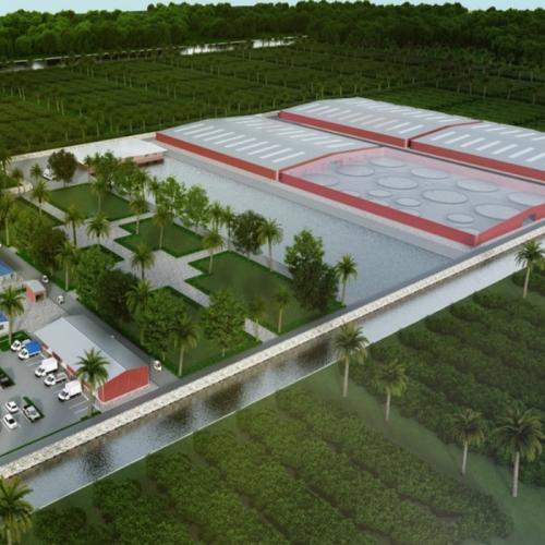 "CPF Builds ""Aquaculture 5.0"" Shrimp Farm In The USA"