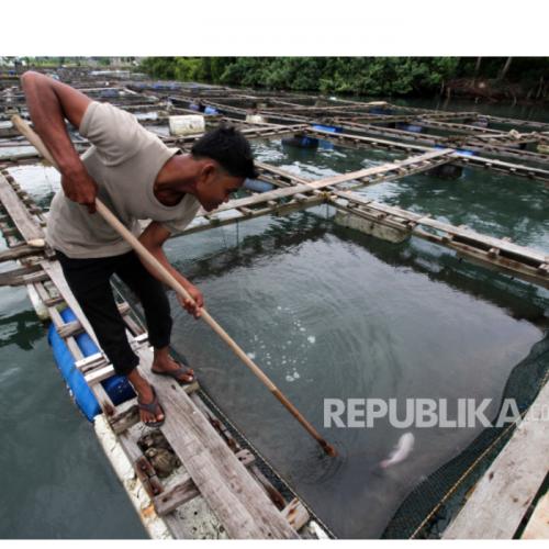 DKP Jabar Bina 60 Petani Milenial Budidaya Ikan dan Udang