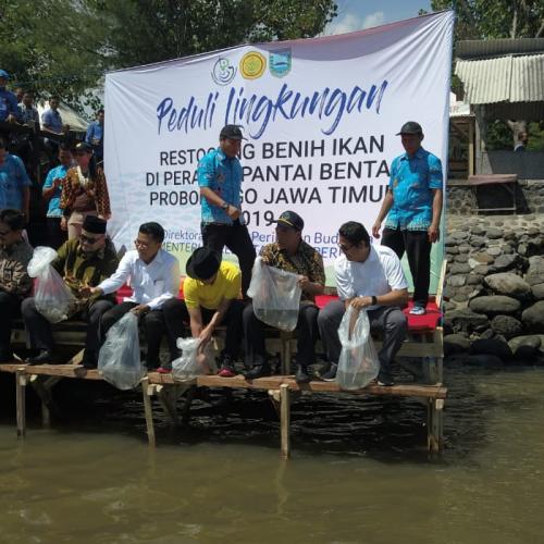 KKP Serahkan Bantuan dan Lepasliarkan 15.000 Benih Kakap di Pantai Bentar Kab. Probolinggo