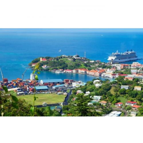 Soren Dawody's Sustainable Aquaculture is Helping Shape Grenada's Economy