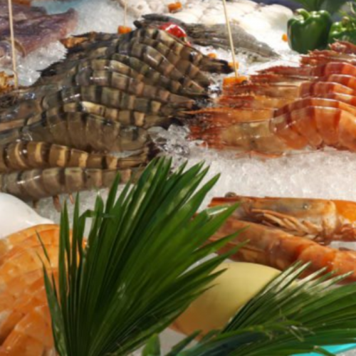 French Study Finds Yeast Derivatives a Potential Solution to Shrimp Disease