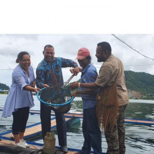 Papua Muda Inspiratif Kembangkan Budidaya Ikan Air Tawar di Sentani