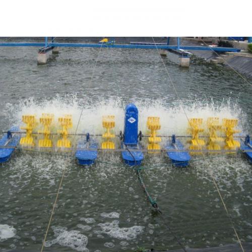 KKP: Budidaya Ikan Nila dengan Kincir Tingkatkan Produktivitias