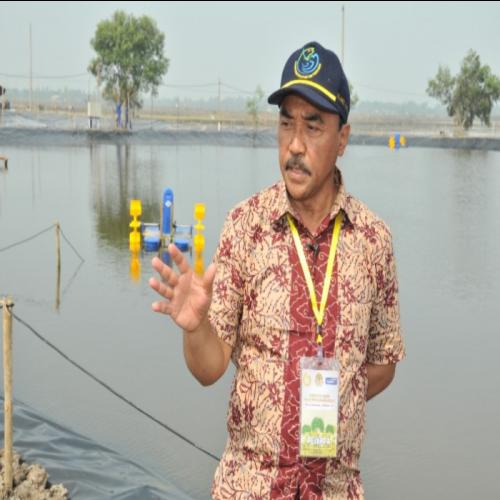 KKP Percepat Sertifikasi Unit Usaha Pembudidayaan Ikan
