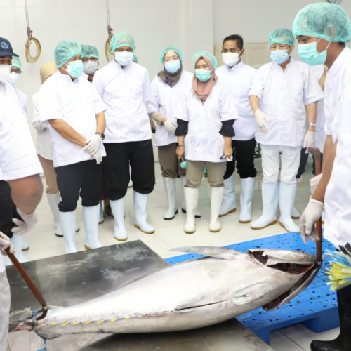 Menteri Trenggono Ajak Asosiasi Tuna Kolaborasi Budidayakan Tuna