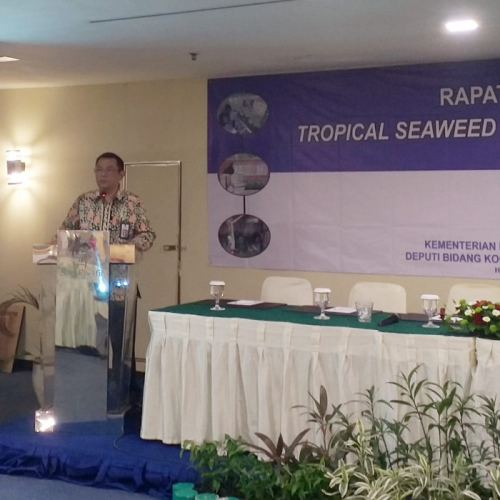 Pertemukan Inovator Produk dan Industri Rumput Laut, Pemerintah Buat Platform Jejaring Digital