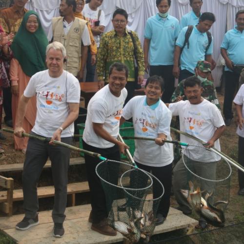 KKP Bersama FAO Berhasil Kembangkan Pakan Ikan Berbahan Baku Bungkil Kelapa Sawit di Sumatera Selatan